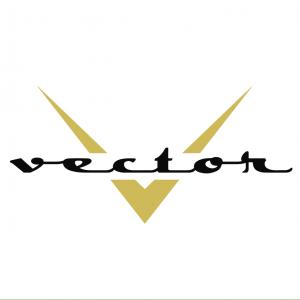 Vector Artist Management